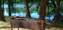 Рыбалка на базе отдыха «Абрикос»