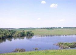 Ставки «Борислав» в Винницкой области