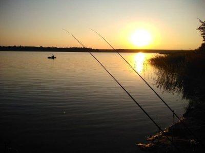 Рыбалка на Белинском пруду