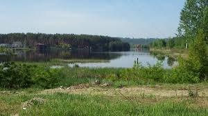 Рыбалка на водоёме в с. Химчин Ивано-Франковской области-1
