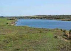 Рыбалка на Анновском ставке в с. Анновка Кировоградской области-1