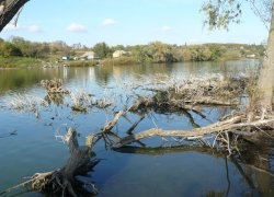 Рыбалка на платном водоёме в с. Остаповка Полтавской области-1