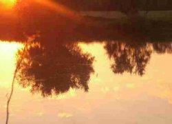 Рыбалка на ставке в с. Пески Луганской области-1
