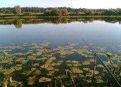 Рыбалка в с. Дубровка Сумской области