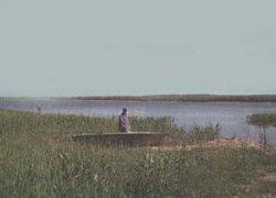 Сватовское водохранилище в Луганской области-1