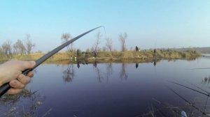Платная рыбалка на пруду в с. Довгое Львовской области-1