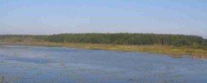 Рыбалка на пруду села Увин в Львовской области-1