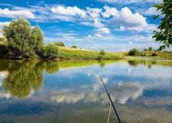 Рыбалка на базе отдыха: Место рыбное