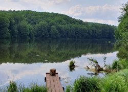Рыбалка на Шелеховском озере