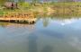 Рыбалка на базе отдыха: Три гусака
