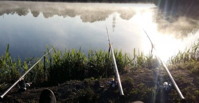 Рыбалка на Петродолинском ставке