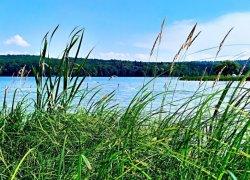 Рыбалка и отдых на спортивном озере «Доброгостов»