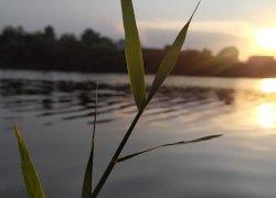 Рыбалка и отдых на водоеме «Заря»