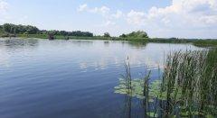 База отдыха и рыбалки Тихая Гавань в Черкасской области-1