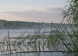 Рыбалка на базе Рыбацкий стан в Сумской области