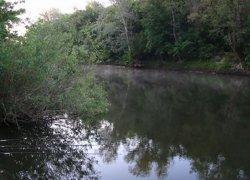 Рыбалка на реке Псел в Сухорабовке Полтавской области