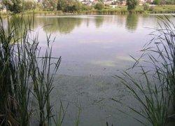 Рыбалка у села Токари Сумской области