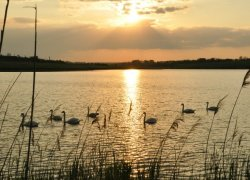 Рыбалка на озере Крутая Балка