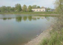 Ставок Подкова в Черкасской области