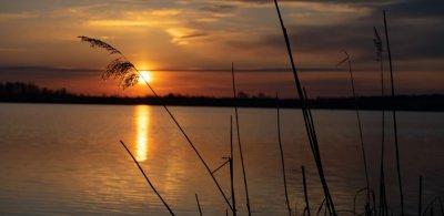 Озеро Кричевичи