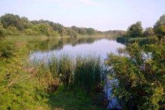 Озеро Осове возле с. Крещатик Черкасской области-1