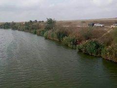Рыбалка на канале Дунай - Сасык в Одесской области