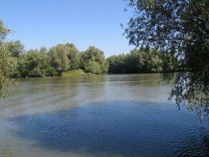 Рыбалка на Кучурганском лимане Одесской области