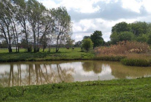 Рыбалка в с. Новогришино