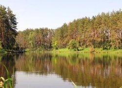 Озеро Рыбацкая стрелка в Киевской области-1