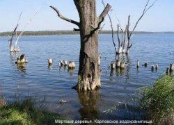 Рыбалка на Верхнем Карловском водохранилище в с. Скучное, Донецкой области-1
