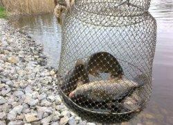 Рыбалка у села Малософиевка в Днепропетровской области-1