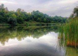Рыболовная база Долина цветов в Черкасской области-1