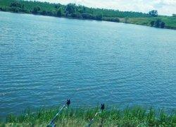 Рыбалка на ставке - У Петровича