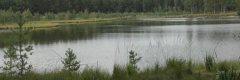 Кисилин ставок в Волынской области