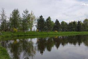 Комплекс Рыбное Место в Киевской области-1