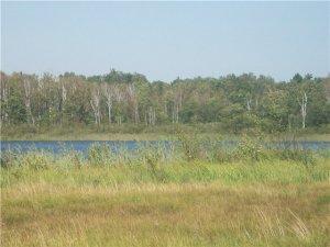 Озеро Панское в Волынской области