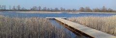Озеро в Черноплесах Волынской области