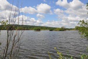 Озеро возле пгт. Ракитное Киевской области-1