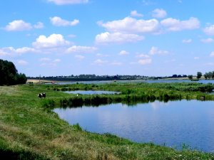 Рыбалка в Приветном Волынской области