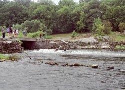 Рыбалка в Курчице Житомирской области