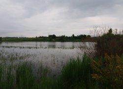 Рыбалка возле Бердичева в Житомирской области