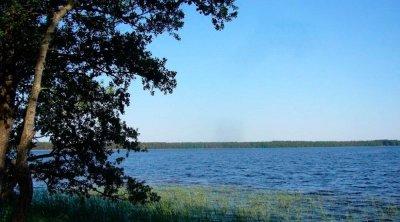 Рыбалка на озерах в Прилесном Волынской области