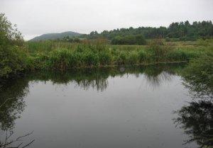 Комплекс Альбатрос во Львовской области