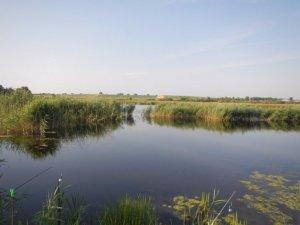 Частное озеро в Гамалиевке Львовской области