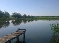 Озеро в Куровичах Львовской области
