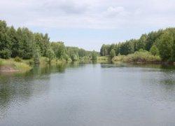 Рыбалка на ставке в с. Приазовское Запорожской области-1