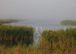 Рыбалка у села Преслав в Запорожской области-1