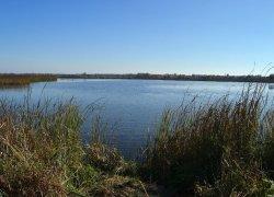 Рыбное хозяйство Тысменица в Ивано-Франковской области