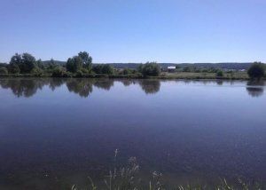 Озера в Воле-Высоцкой Львовской области