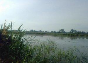 Озеро в Батятичах Львовской области